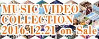 MV COLLECTION