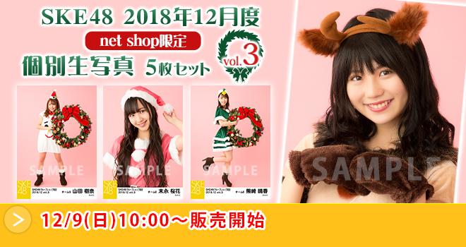 SKE48 2018年12月度 net shop限定個別生写真5枚セットvol.3(05)