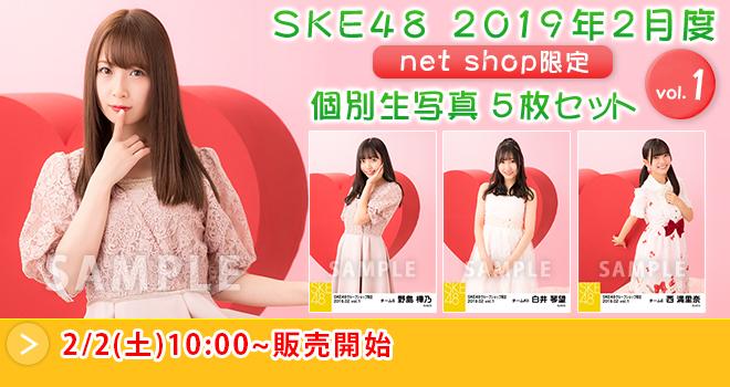 SKE48 2019年2月度 net shop限定個別生写真5枚セットvol.1(02)