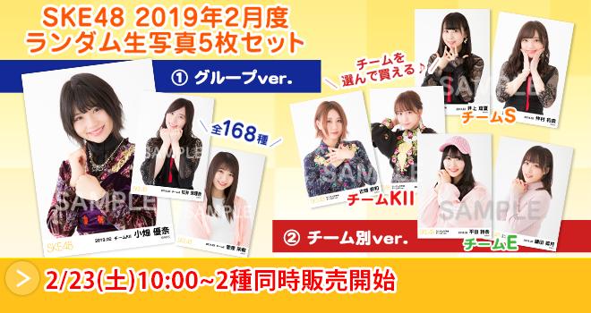 SKE48 2019年2月度 ランダム生写真5枚セット