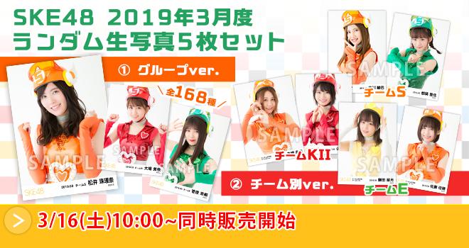 SKE48 2019年3月度 ランダム生写真5枚セット(02)