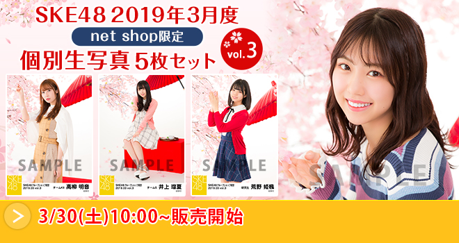 SKE48 2019年3月度 net shop限定個別生写真5枚セットvol.3(04)